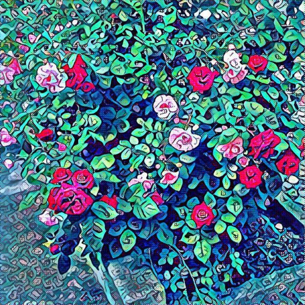 rosenbusch-bild-nach-der-bearbeitung-mit-prisma
